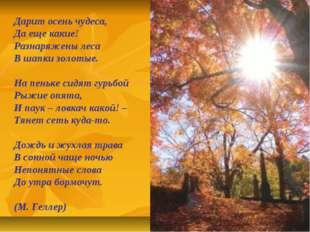 Дарит осень чудеса, Да еще какие! Разнаряжены леса В шапки золотые. На пеньке