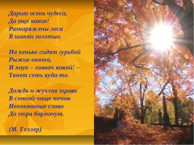 Дарит осень чудеса, Да еще какие! Разнаряжены леса В шапки золотые. На пеньке...