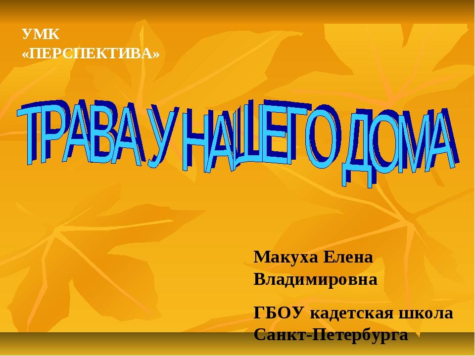 Макуха Елена Владимировна ГБОУ кадетская школа Санкт-Петербурга УМК «ПЕРСПЕКТ...
