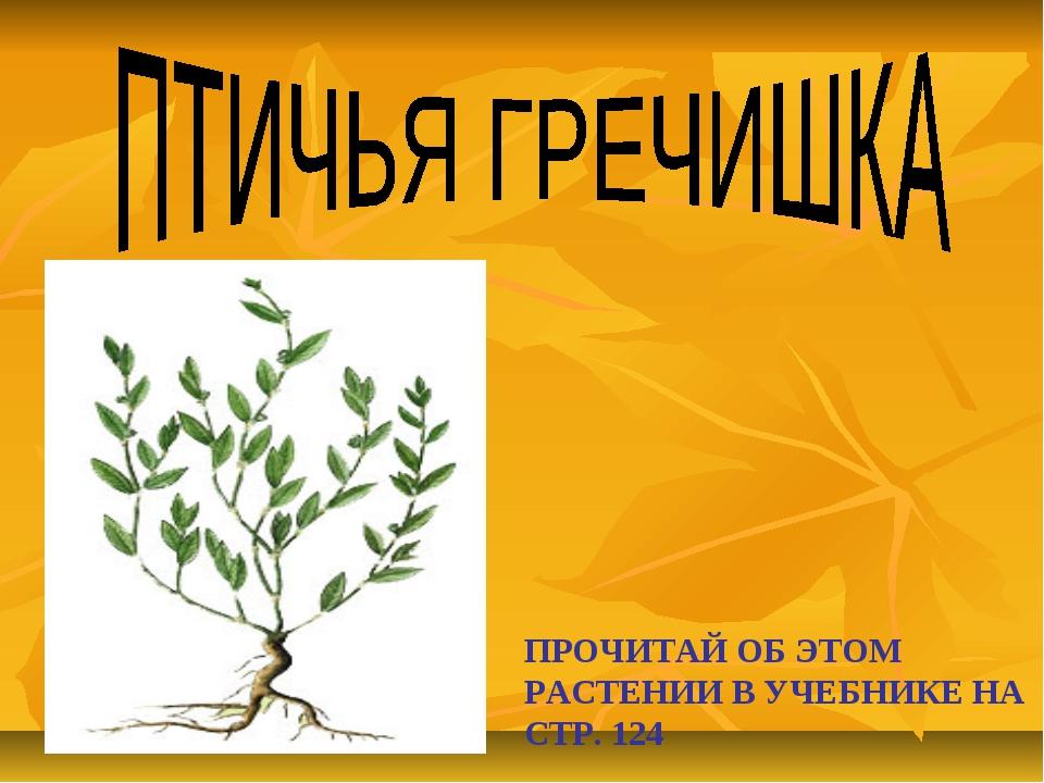 ПРОЧИТАЙ ОБ ЭТОМ РАСТЕНИИ В УЧЕБНИКЕ НА СТР. 124