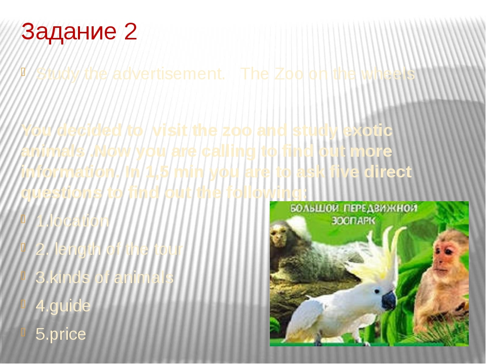 Задание 2 Study the advertisement. The Zoo on the wheels You decided to visit...