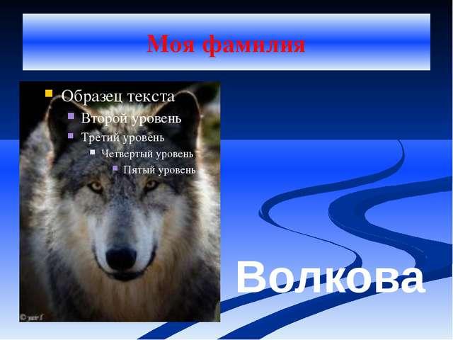 Моя фамилия Волкова
