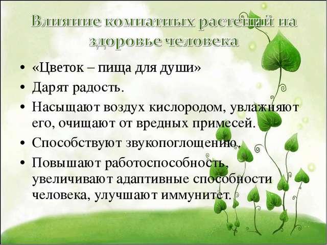 «Цветок – пища для души» Дарят радость. Насыщают воздух кислородом, увлажняют...