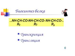 Биосинтез белка Транскрипция Трансляция