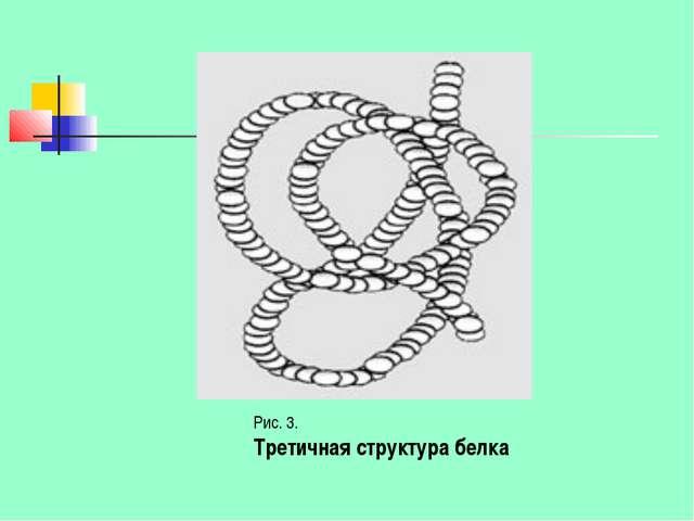 Рис. 3. Третичная структура белка
