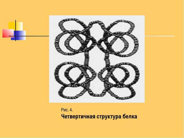 Рис. 4. Четвертичная структура белка