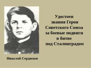 Николай Сердюков Удостоен звания Героя Советского Союза за боевые подвиги в