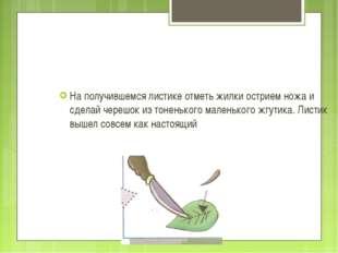 На получившемся листике отметь жилки острием ножа и сделай черешок из тоненьк