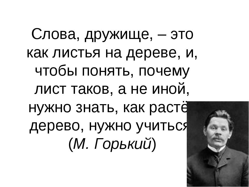 Слова, дружище, – это как листья на дереве, и, чтобы понять, почему лист тако...