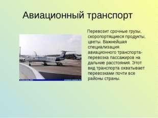 Авиационный транспорт Перевозит срочные грузы, скоропортящиеся продукты, цвет