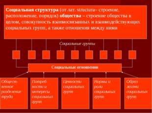 Социальная структура (от лат. structura– строение, расположение, порядок) общ