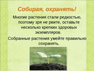 Собирая, охранять! Многие растения стали редкостью, поэтому зря не рвите, ост