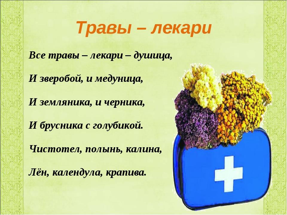 Травы – лекари Все травы – лекари – душица, И зверобой, и медуница, И земляни...