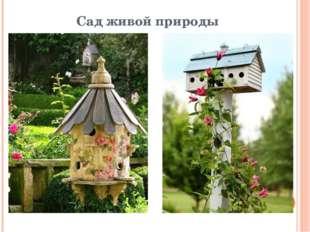 Сад живой природы
