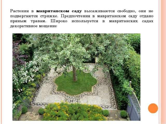 Растения в мавританском саду высаживаются свободно, они не подвергаются стриж...