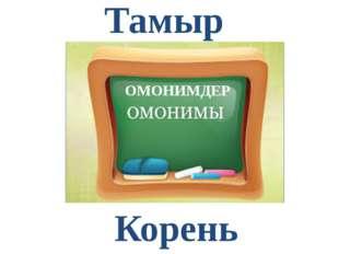 Тамыр Корень ОМОНИМДЕР