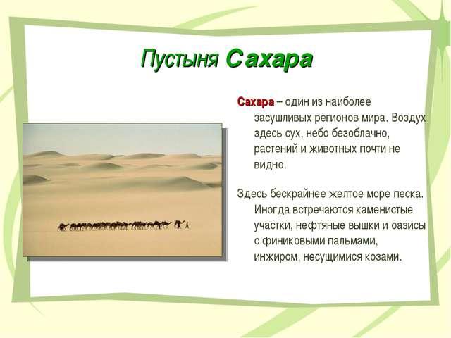 Пустыня Сахара Сахара – один из наиболее засушливых регионов мира. Воздух зде...