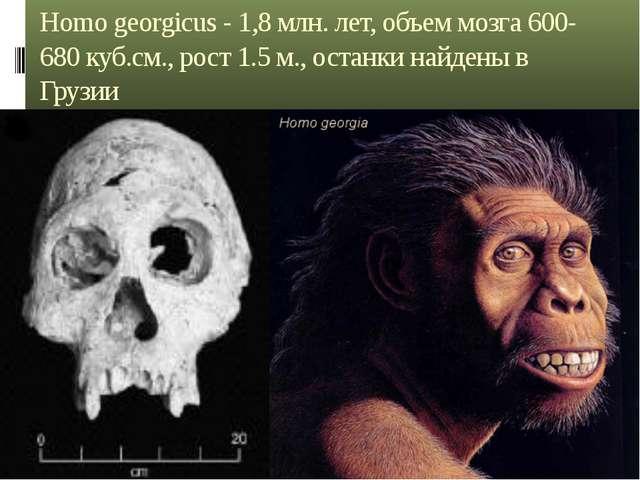 Homo georgicus - 1,8 млн. лет, объем мозга 600-680 куб.см., рост 1.5 м., оста...