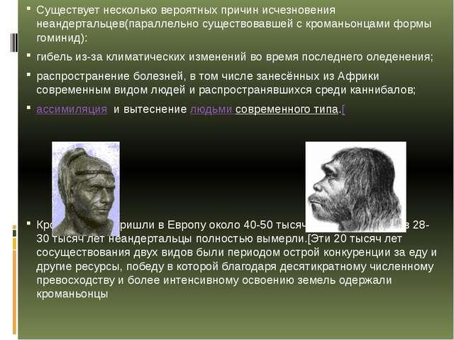 Существует несколько вероятных причин исчезновения неандертальцев(параллельно...