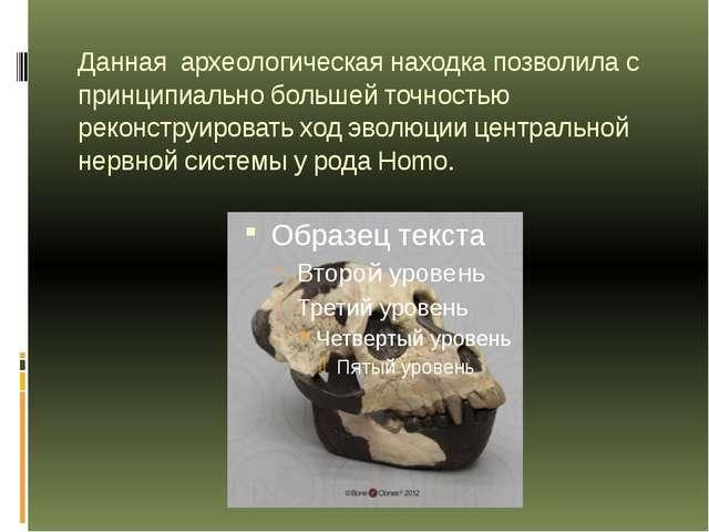 Данная археологическая находка позволила с принципиально большей точностью ре...