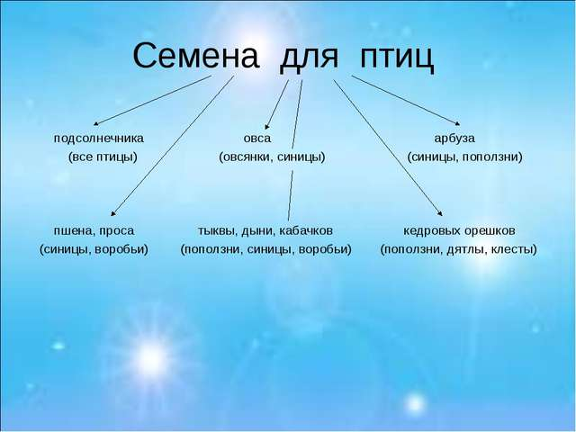 Семена для птиц подсолнечника овса арбуза (все птицы) (овсянки, синицы) (сини...