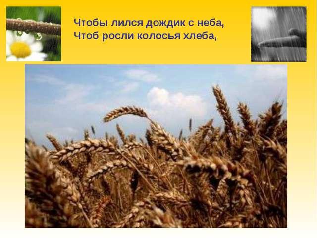 Чтобы лился дождик с неба, Чтоб росли колосья хлеба,