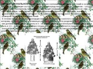 ПРОПОРЦИОНАЛЬНОСТЬ– количественное соотношение размеров растений и сосуда. Цв