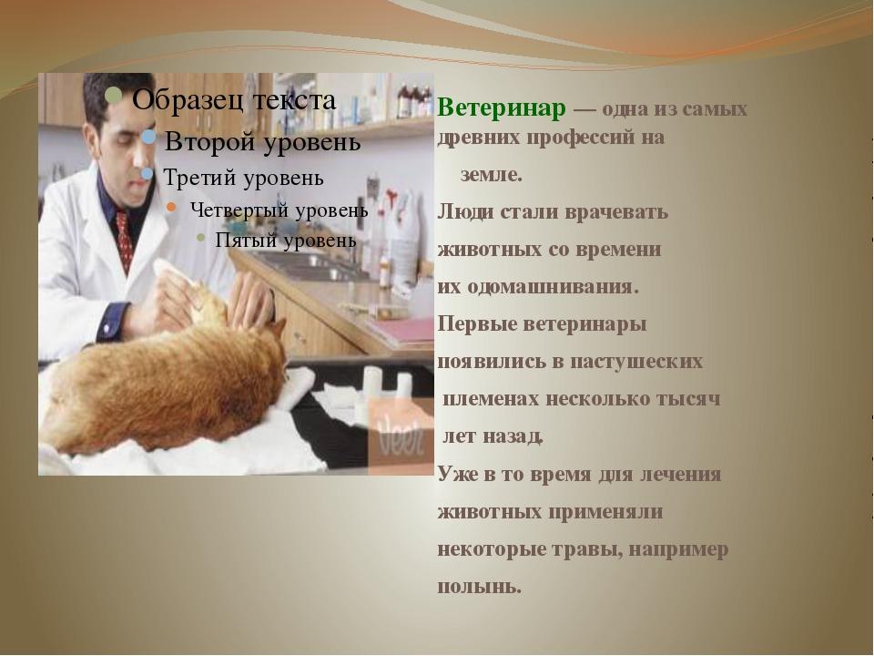 Ветеринар—однаизсамых древнихпрофессийна земле. Людисталиврачевать...