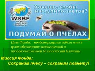 Миссия Фонда: Сохраним пчелу – сохраним планету! Цель Фонда: предотвращени