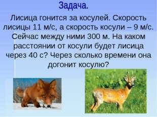 Лисица гонится за косулей. Скорость лисицы 11 м/с, а скорость косули – 9 м/с.