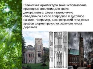 Готическая архитектура тоже использовала природные аналогии для своих декорат