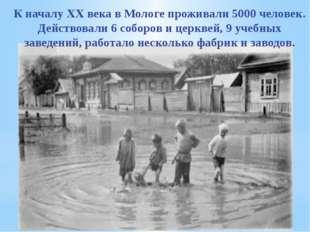 К началу ХХ века в Мологе проживали 5000 человек. Действовали 6 соборов и цер