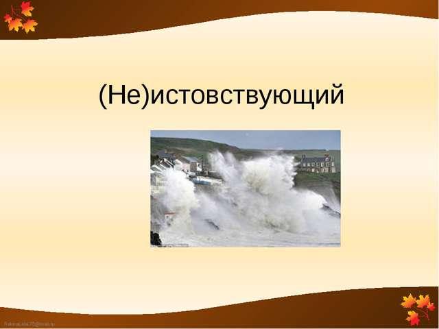 (Не)истовствующий FokinaLida.75@mail.ru