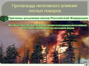 Пропаганда негативного влияния лесных пожаров