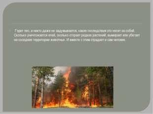 Горит лес, и никто даже не задумывается, какие последствия это несет за собо