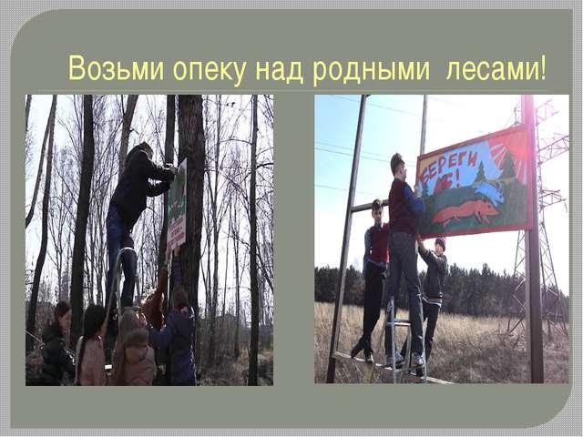 Возьми опеку над родными лесами!