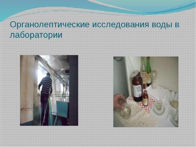 Органолептические исследования воды в лаборатории