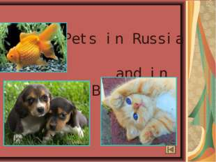 Pets in Russia and in Britain.