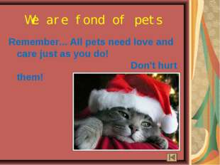 Remember... All pets need love and care just as you do! Don't hurt them! We a