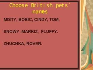 Choose British pets` names MISTY, BOBIC, СINDY, TOM. SNOWY ,MARKIZ, FLUFFY. Z