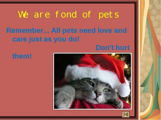 Remember... All pets need love and care just as you do! Don't hurt them! We a...