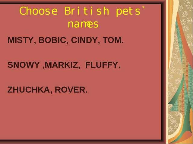 Choose British pets` names MISTY, BOBIC, СINDY, TOM. SNOWY ,MARKIZ, FLUFFY. Z...