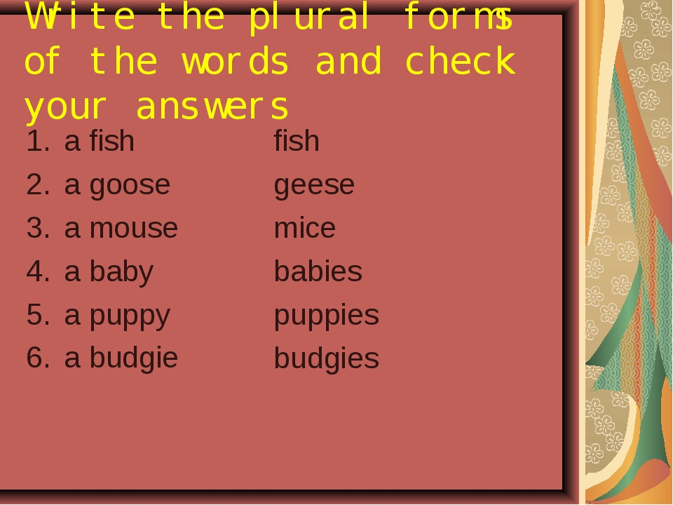 Write the plural forms of the words and check your answers a fish a goose a m...