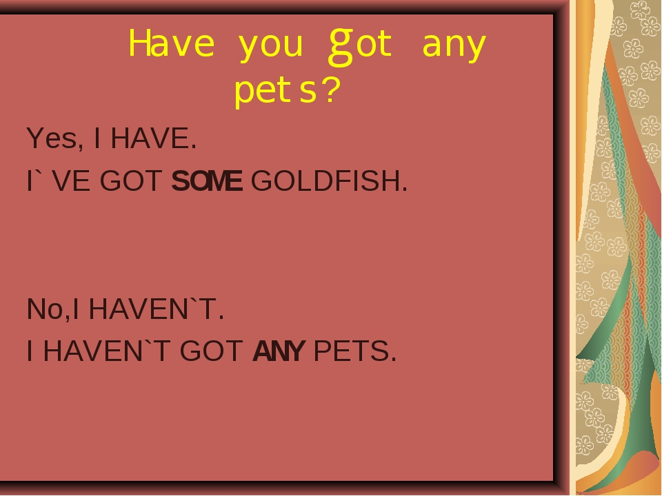 Have you got any pets? Yes, I HAVE. I` VE GOT SOME GOLDFISH. No,I HAVEN`T. I...