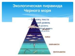 Экологическая пирамида Черного моря