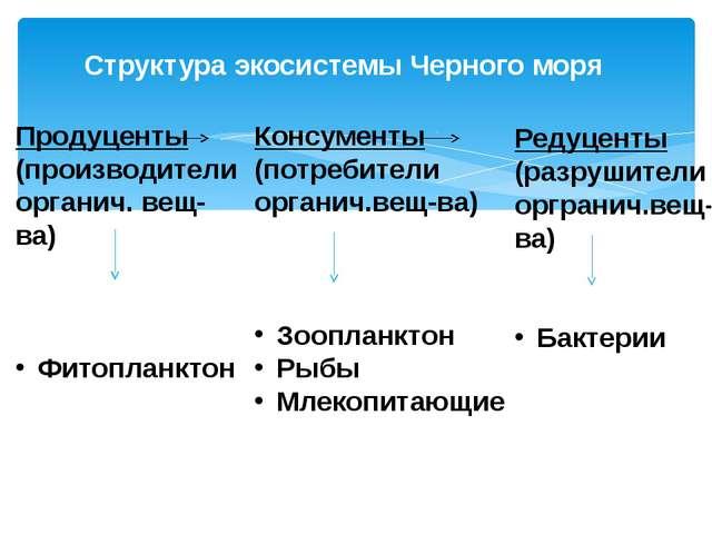 Структура экосистемы Черного моря Консументы (потребители органич.вещ-ва) Зоо...