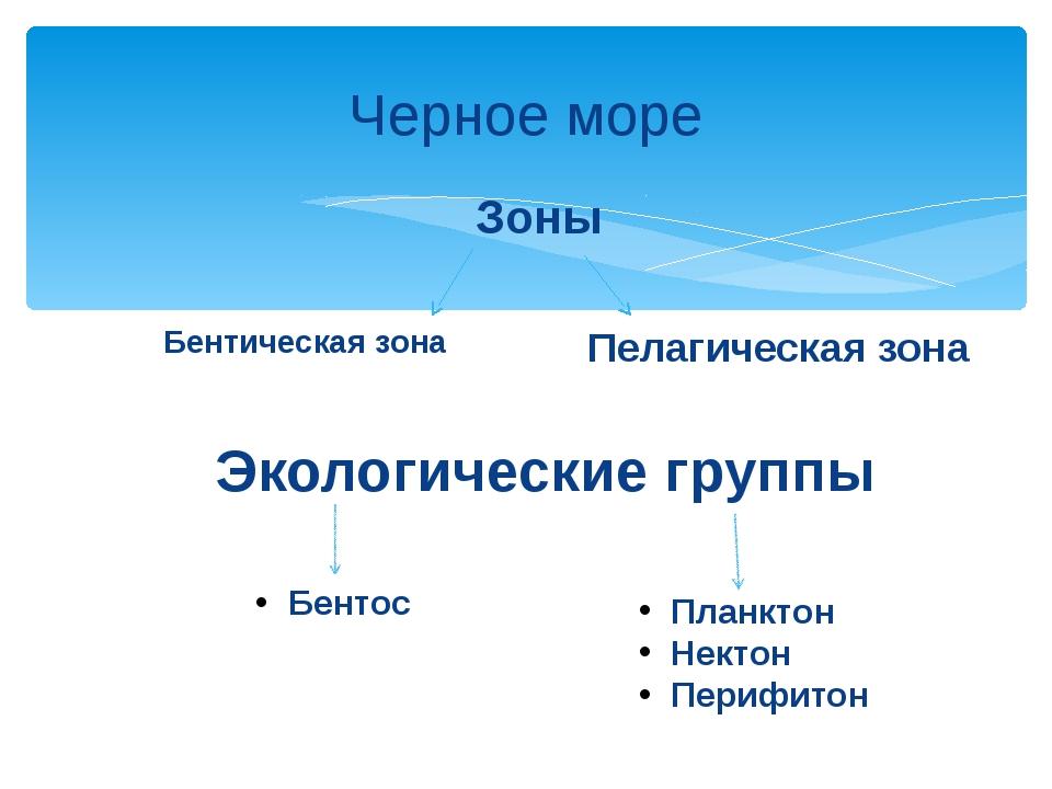 Черное море Бентическая зона Пелагическая зона Зоны Экологические группы Бент...