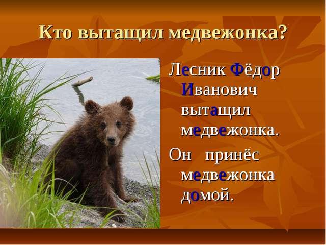 Кто вытащил медвежонка? Лесник Фёдор Иванович вытащил медвежонка. Он принёс м...