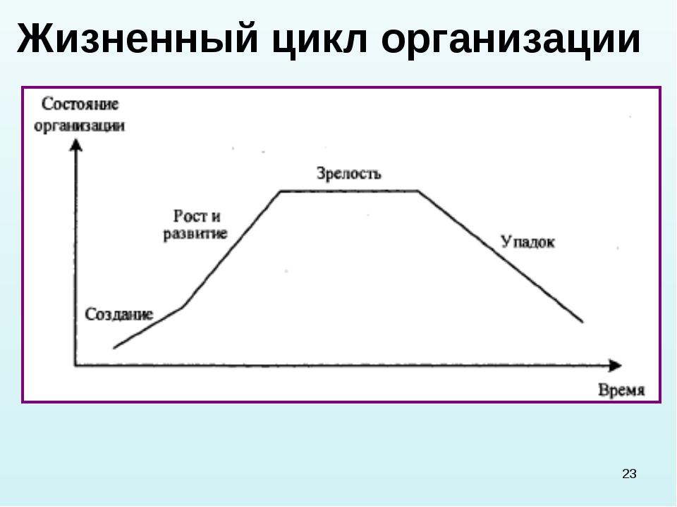 * Жизненный цикл организации