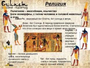 Религия Политеизм – многобожие, язычество Боги зооморфны, с телом человека и